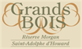 GRANDS BOIS - Réserve Morgan, Saint-Adolphe-d'Howard