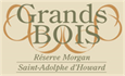 Grand Bois Réserve Morgan, Saint-Adolphe-d'Howard